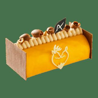Patrick Agnellet : Chocolatier-Pâtissier Annecy : bûche glacée Évasion